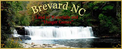 Banner for Brevard Visitors