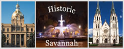 Banner for Savannah Visitors